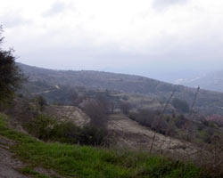 land for sale Salamiou