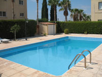 chloraka paphos apartment for rent
